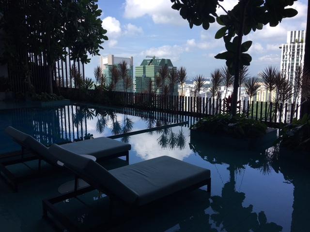pool oasia dzień