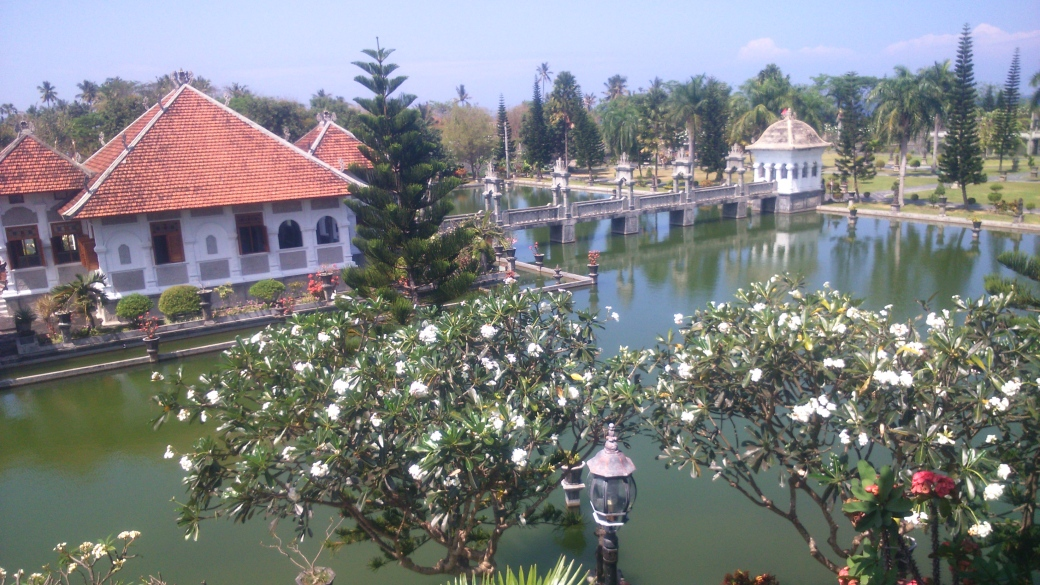 widok na pałac